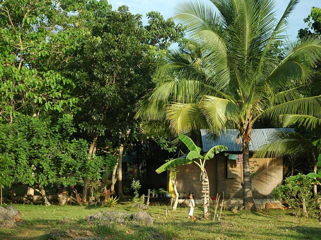 Paysage de campagne à Bohol.