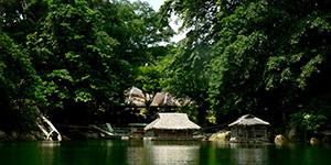 île de Negros - Philippines