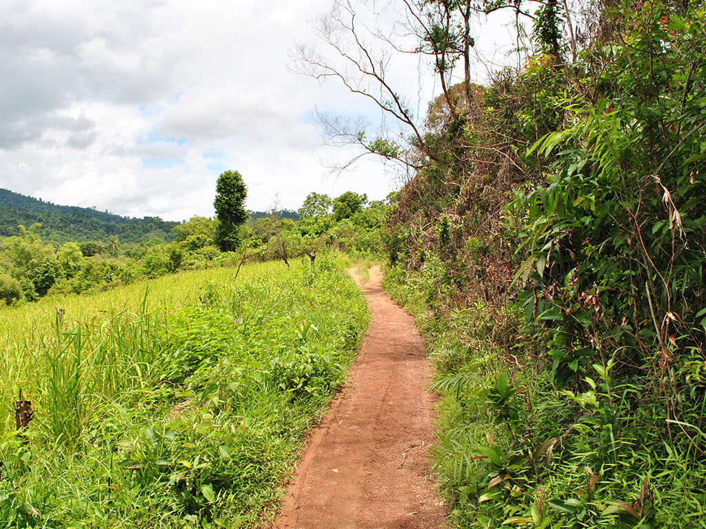 Chemin de terre à Palawan, Philippines.